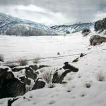 Francisco Molina Balderas - Nieve