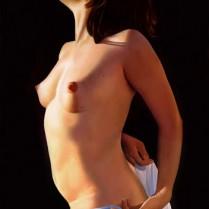 Francisco Trigueros - Desnudo al Sol II