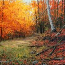 nº22 Miguel Peidro 80+40-bosque Peloño-Picos de europa