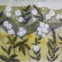 Campo con flores 52x38