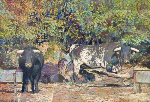 22-toro negro, toro blanco-77x112cms-2015